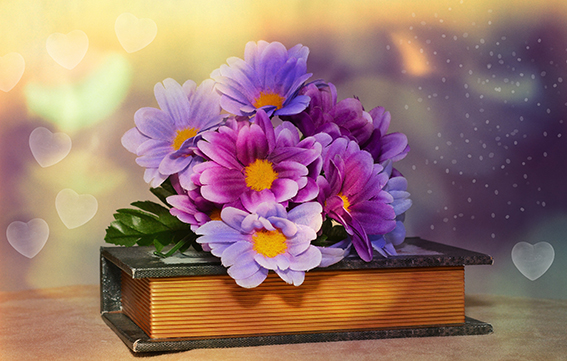 blossom book bokeh plant flower purple petal flowers crocus floristry artificial flowers flowering plant flower bouquet floral design land plant flower arranging 759222